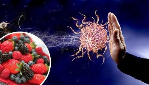 Coronavirus – Refuerza tu Sistema Inmune